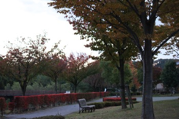 Park1_2